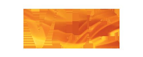 Logo Vue 3.0